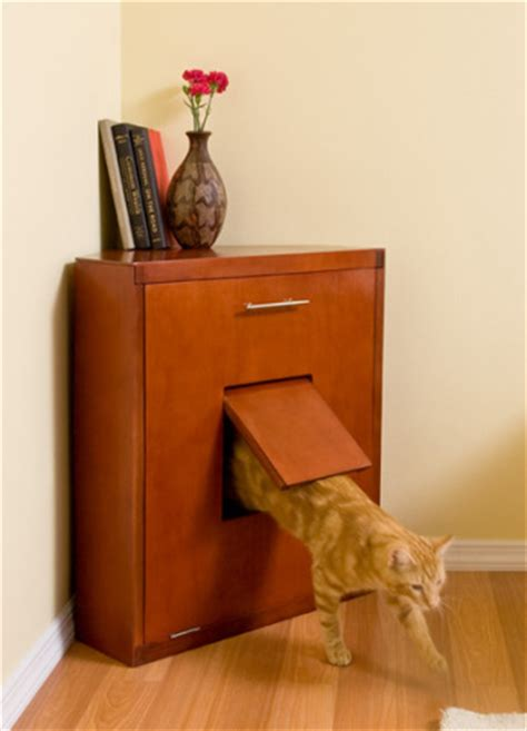 Cabinet Litter Box by Feng Shui For The Cat Euphoric Feng Shui
