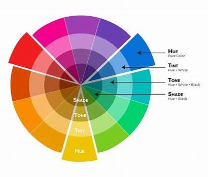Colour Properties Theory Scheme Wheel Harmonies Website