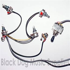 Guitar Wiring Kit 2 Volume 2 Tone Input Jack Socket Switch Pot Potentiometer