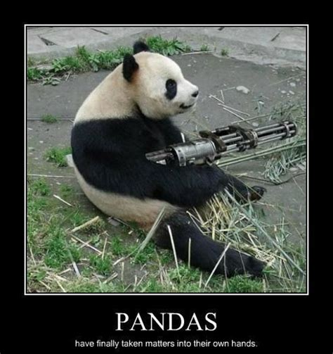 Funny Panda Memes - 301 moved permanently