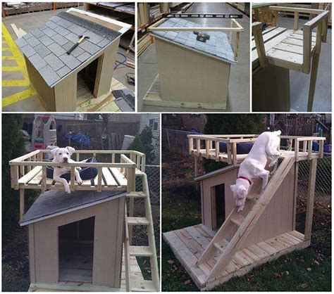 incredible ideas diy