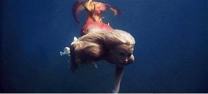 Splash Mermaid Mermaids Hannah Daryl Tail Gifs