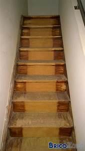 Renover Un Escalier En Bois : renover escalier et paliers ~ Premium-room.com Idées de Décoration