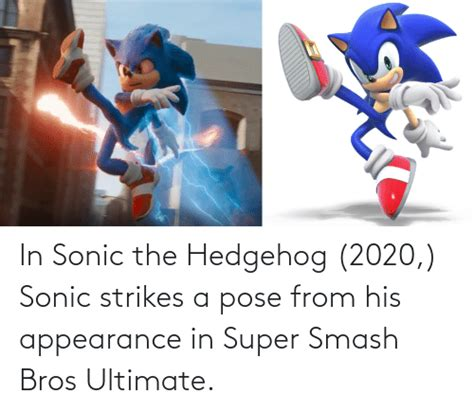 25+ Best Memes About Sonic the Hedgehog | Sonic the ...