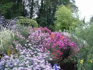 Plantes Vivaces Autour D Un Bassin : plantes vivaces magnifiques dans votre jardin ~ Melissatoandfro.com Idées de Décoration