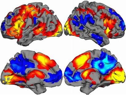 Imagery Activation Stimuli Sentence Task Effect Language