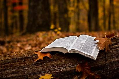 Bible Study Open Hall God Cyndispivey Grace