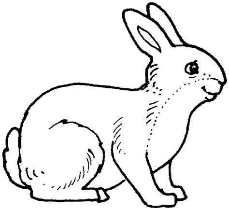printable animal coloring pages coloring home