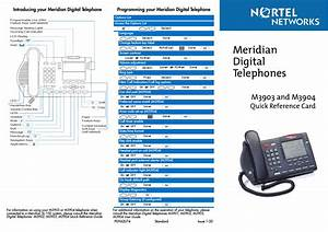 Nortel Networks Meridian M3903 User Manual