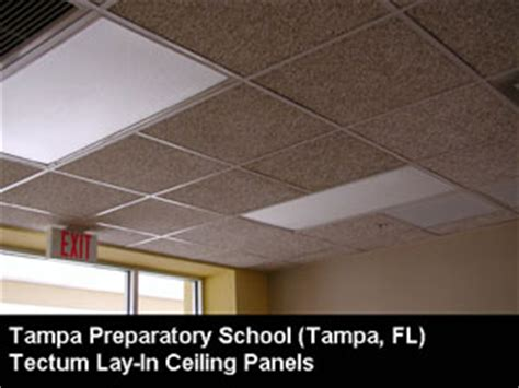 tectum direct attached ceiling panels tectum ceiling panels