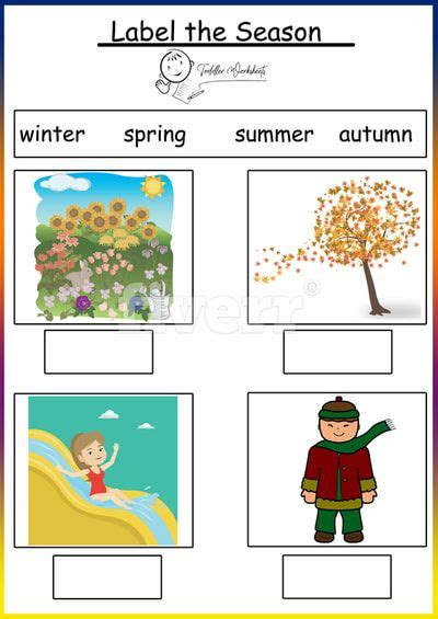 weather  season worksheet  seasons worksheets