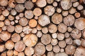 Unterstand Für Brennholz : holzunterstand f r brennholz die grillsaison kann kommen ~ Frokenaadalensverden.com Haus und Dekorationen