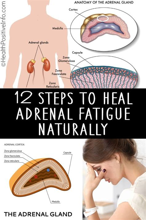 steps  heal adrenal fatigue naturally  images