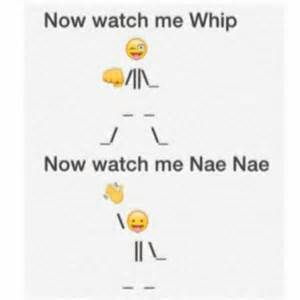 now watch me whip now watch me nae nae