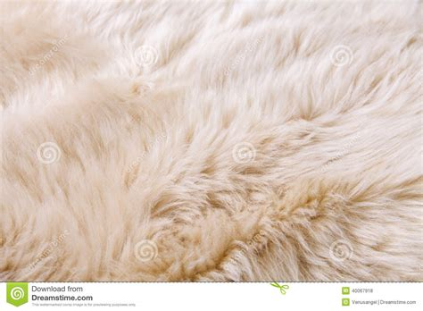 Carpet With Pattern by Close Up Texture Of Fur Carpet Stock Photo Image 40067918
