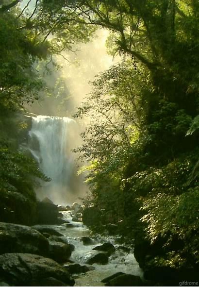 Nature Animated Waterfall Forest Gifs Amazing Scenery
