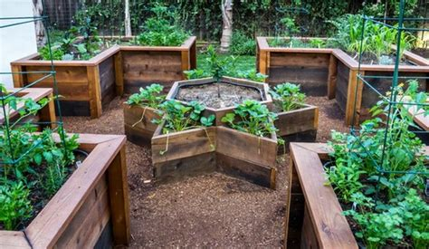 inexpensive raised garden beds 1000 ideas about cheap raised garden beds on
