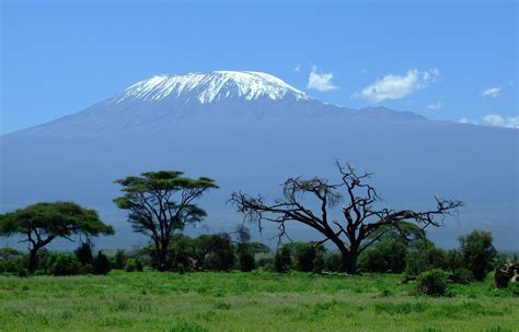 Mount or mounts may also refer to: Reaching the Roof of Africa: How to Hike Mount Kilimanjaro - The Trek