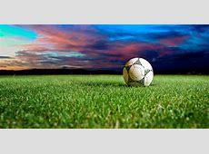 Balones de Futbol en el cesped