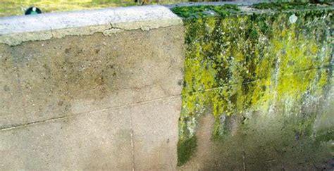 comment nettoyer des murs fa 231 ades et terrasses r 233 224 la hune