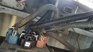 2004 Chevy Truck Wiring Harnes
