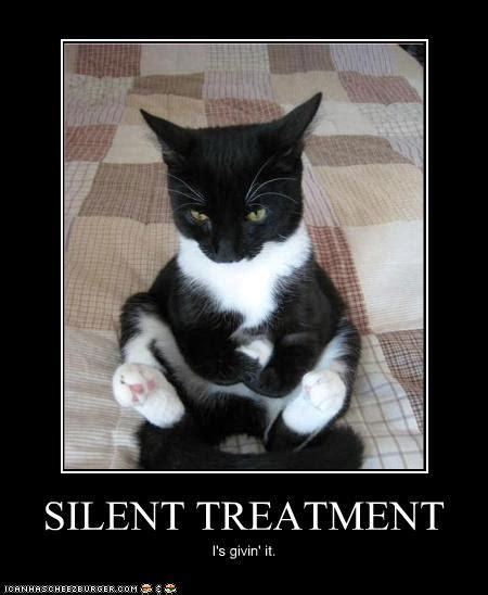 Silent Treatment Meme - silent treatment quotes like success
