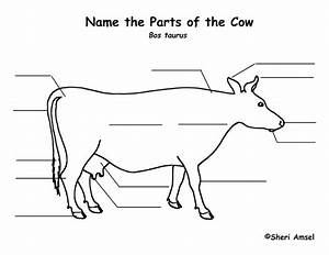 Cow Labeling Page