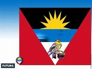 fond d39ecran drapeau antigua et barbuda With lovely plan de maison original 9 fond decran chiot bouvier bernois calme jamais