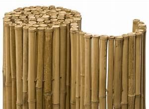 Bambus Balkon Sichtschutz : balkon sichtschutz aus bambus praktische und originelle idee balkon sichtschutz aus bambus ~ Eleganceandgraceweddings.com Haus und Dekorationen