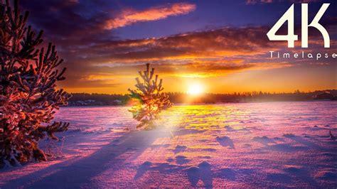 beauty  winter  countryside  uhd timelapse