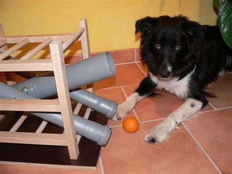 leckerchen und ballspender zum nachbauen partner hund
