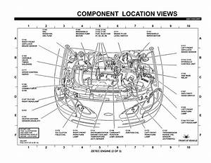 Ford Zetec Engine Wiring Diagram