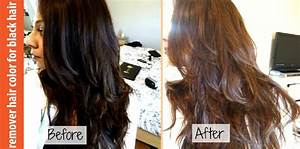 The Gallery For Gt Brown Black Hair Color Chart