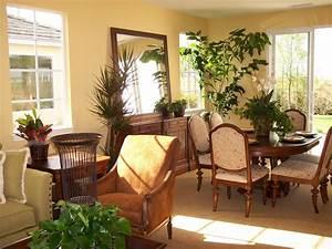 Graceful house plants living room interior design for Interior decorating houseplants