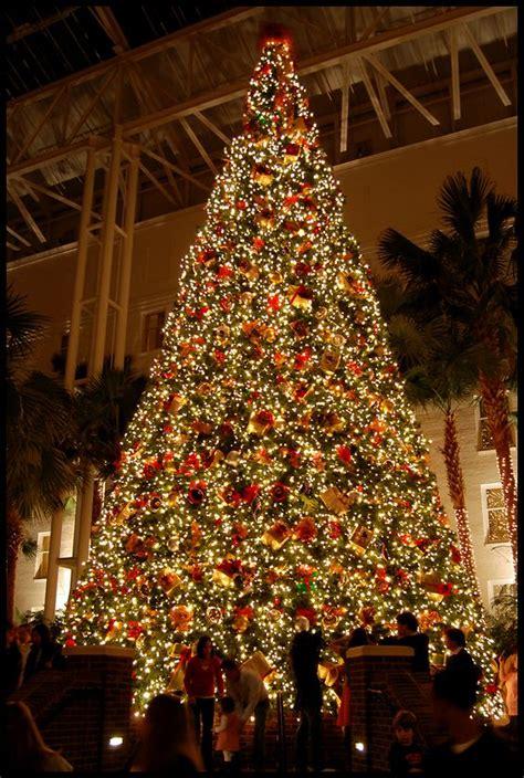 christmas lights of nashville hotels nashville and christmas on pinterest