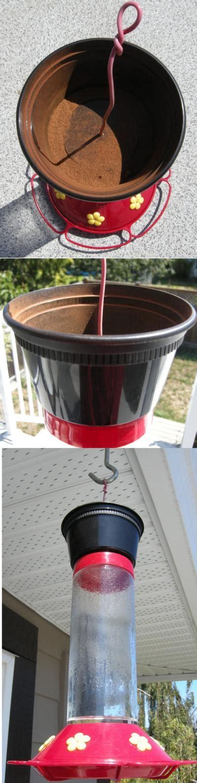 how to keep ants hummingbird feeder keeping ants out of the hummingbird feeder thriftyfun