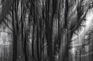 Tache De Couleur Peinture Fond Blanc : fond d 39 cran abstrait lumi re lumi res longue exposition surr aliste icm impression ~ Melissatoandfro.com Idées de Décoration