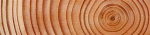 Welches Holz Für Carport : welches holz ist geeignet f r ein carport premium carportwerk ~ A.2002-acura-tl-radio.info Haus und Dekorationen
