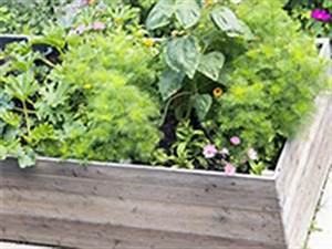Hochbeet Blumen Bepflanzen : jetzt hochbeet richtig bepflanzen schritt f r schritt anleitung hier ~ Whattoseeinmadrid.com Haus und Dekorationen