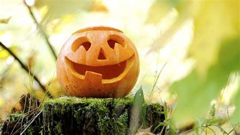 comment decouper  decorer une citrouille halloween