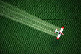 important to stay focused on the effects of pesticides and herbicides  Pesticides And Herbicides