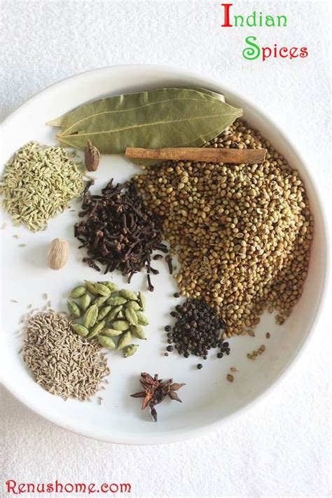 meaning of cuisine in indian spices glossary of indian spices in