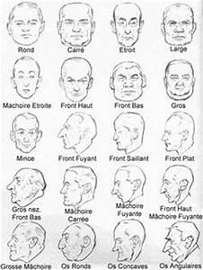 Forme Visage Homme : 44 meilleures images du tableau morphologie visage face ~ Melissatoandfro.com Idées de Décoration