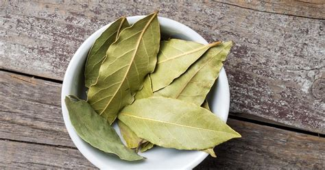 substitute for bay leaf why we cook with bay leaves tasting table