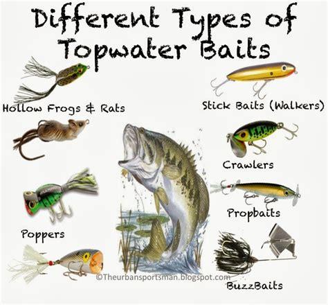 urban sportsman understanding topwater baits
