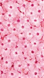 Pink Flowers Wallpapers for iPhone 5
