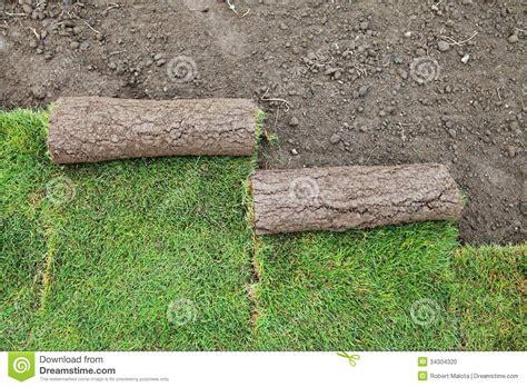 grass stock photo image 34304320