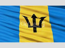 Fluttering Flag Of Barbados Royaltyfree video and stock