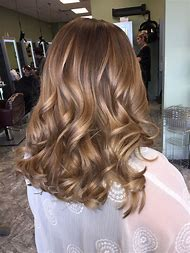 Honey Blonde Hair with Dark Brown Balayage