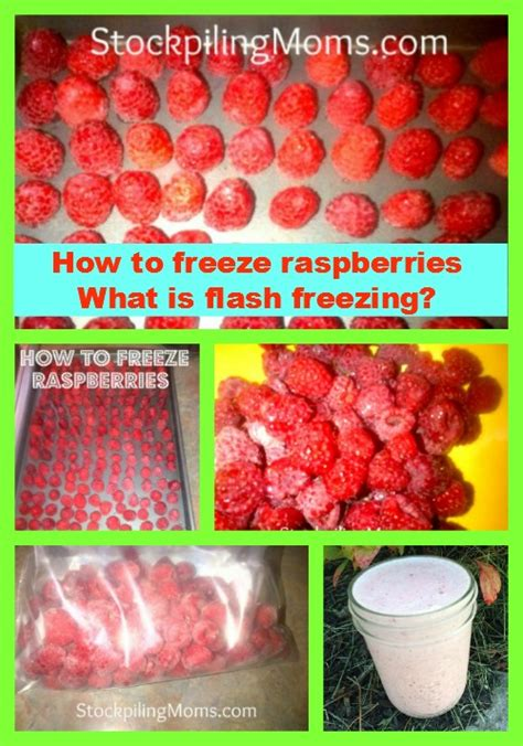 what is flash freezing randomness how do you flash freeze food